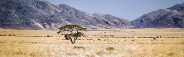 Die Weiten Namibias