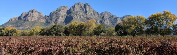 Südafrika für Genießer