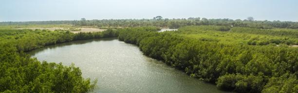 Höhepunkte Gambias