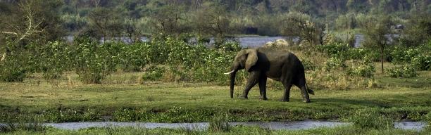 Dreamlike Malawi