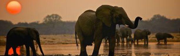 Entdeckerreise Simbabwe