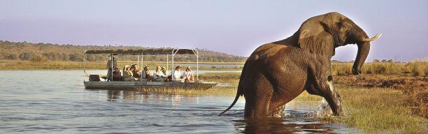Selbstfahrertour Botswana & Namibia