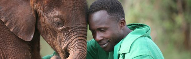 Daphne Sheldrick's Elephant Orphanage Excursion