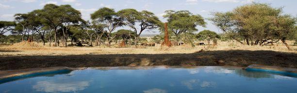 Tanzania in Style - Luxurious Road/Air Safari